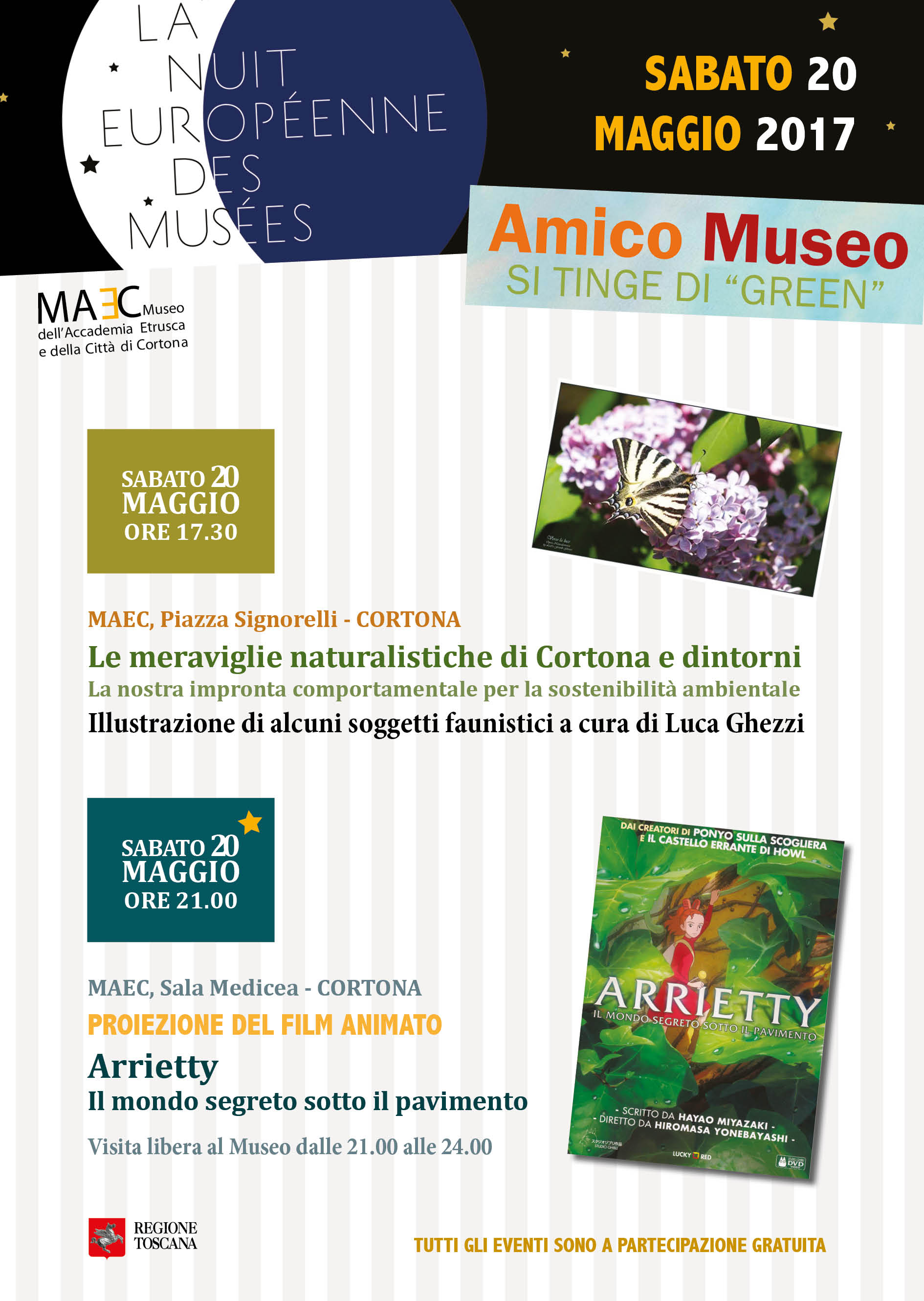 Accademia Etrusca di Cortona | Amico museo 2017